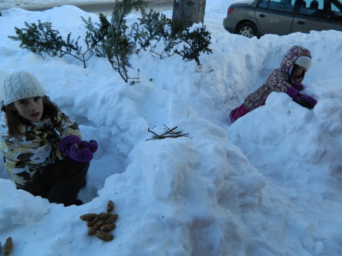 Our front yard is pocked with forts and specialty stores that sell pine cones.