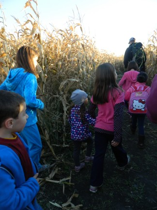 A rare moment going through the corn maze: an adult (Stan) at the front of the pack of kids